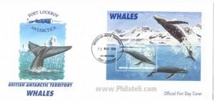British Antarctic Territory Whales